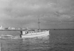 Alofa
