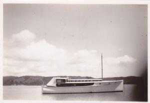 FALCON PONUI CIRCA 1948