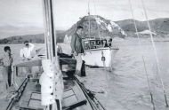 Shenandoah from Alcestis - Whangaroa Heads in background