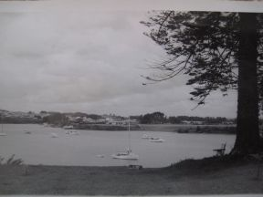 TAMAIK RIVER 1950s FROM COGGAN PROERTY RIVER VIEW RD PANMURE