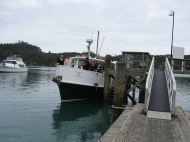 Kawau Isle 60th Anniversary at Bon Accord