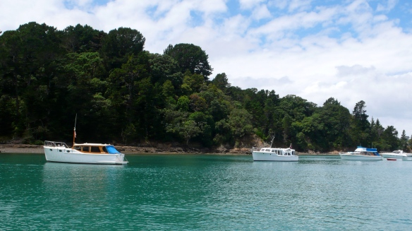 3 Woodys In Opopo Bay, Waiheke Island