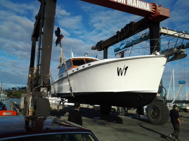 W1 - READY FOR THE WATER GULF HARBOUR 29.5.15