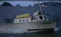 JAGUAR - c1975 - 1