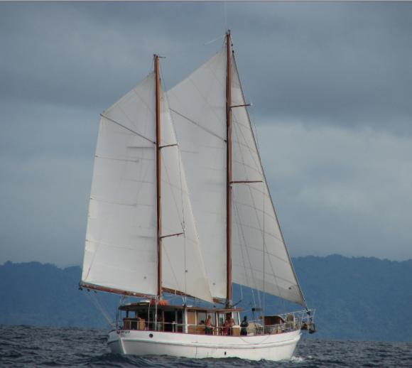 Ranui off Maskelynes Islands, Vanuatu 2010
