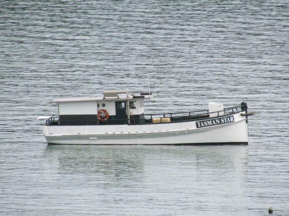 Tasman Star 2014