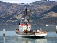 Waikawa,Vos Boats now