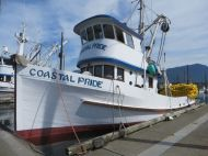 Salmon purse seiner Coastal Pride at Matlakatia, Alaska.