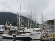 Salmon trolling fleet, Sitka, Alaska.