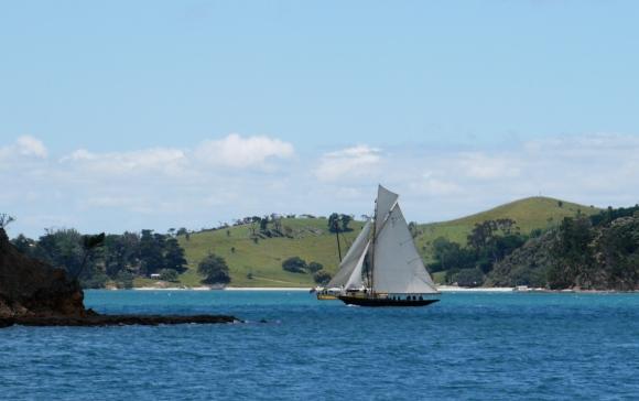 Waitangi on her way to winning