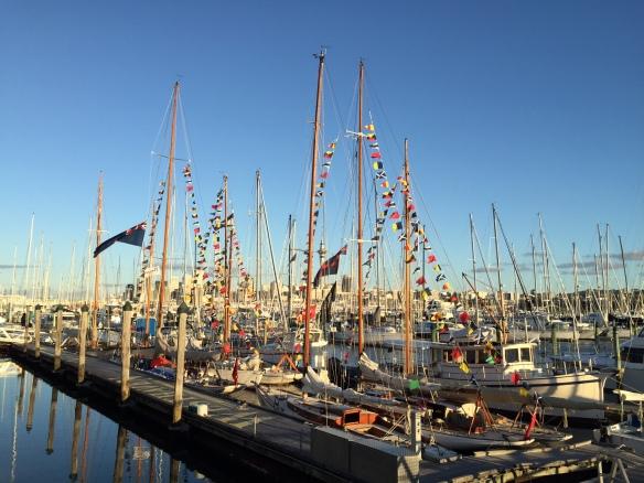 CYA Regatta Fleet @ RNZYS