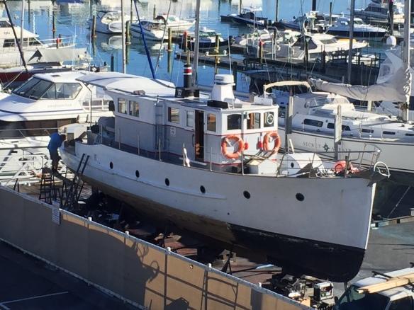 Wairangi at Pier 21