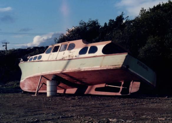 Rorqual 1986