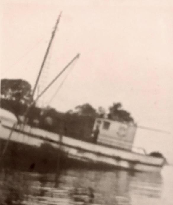 IMG-3796