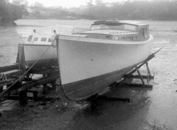 ngarunui1956 (3)