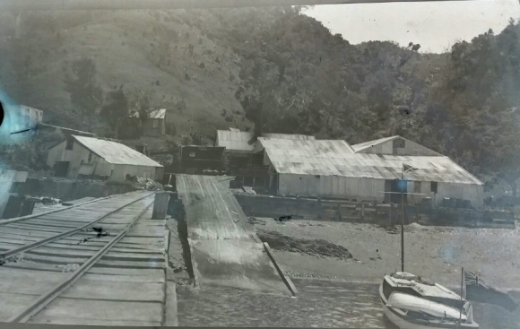 Whangamumu Whaleing Station 1923