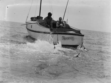 WANDERER - 1937a