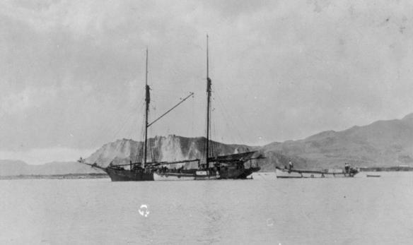 hauiti-about-ot-be-manurere-tauranga-1929-2