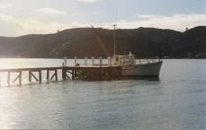 kowai-at-her-wharf-harris-bay-kawau-ex-peter-morton-2