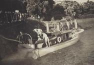 lady-sandra-sinking-8