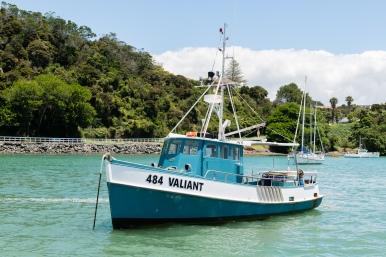 valiant-484