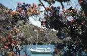 Maroro - at anchor at Great Barrier Island 01, 1960ish