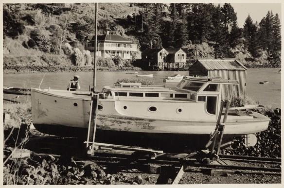 Te papa Coastal community landscape scene, 1950s, New Zealand, by Eric Lee-Johnson