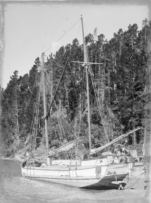 THISTLE - SCOW - KAWAU -1940s