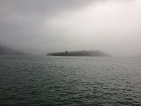 Milford Island in the mist