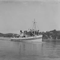 Kaiwhaka