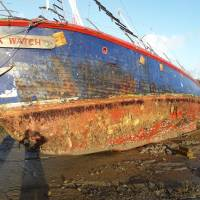 Black Watch Sinks off Bayswater this morning