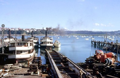 AUCKLAND STEAM FERRIES WITH HDML ALERT