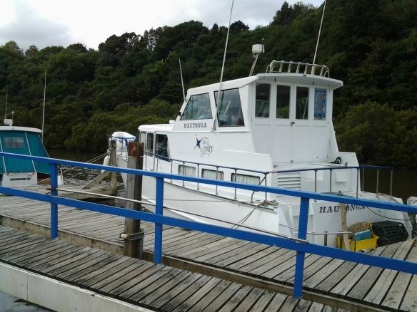 hautonga warkworth river dec2018 - 2