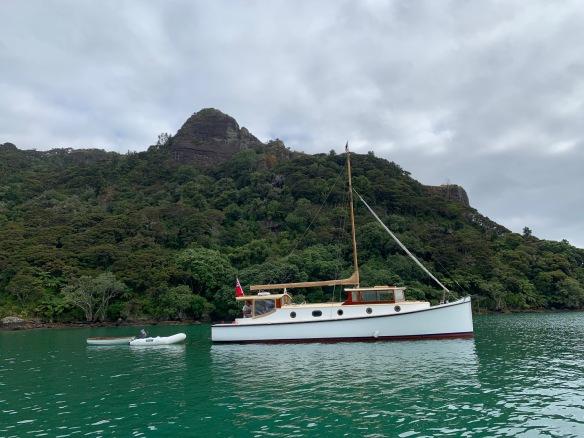 pacific whangaroa jan 2019
